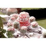 Wedding Party - My photos -