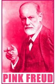 Pink Freud - Meine Fotos -