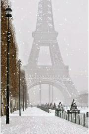 Paris Eiffel Tower Winter photo - Moje fotografije -