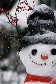 Winter Beauty Pic - Moje fotografije -