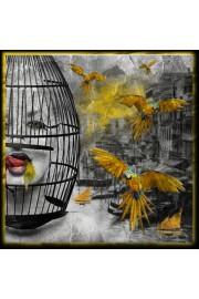 art - My photos -