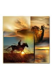 gallop - Мои фотографии -