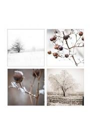 winter photos - Meine Fotos -