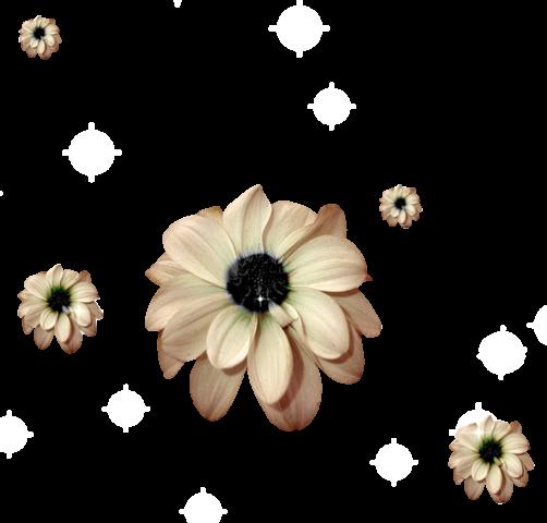 Flower Plants Beige